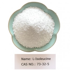 L-Isoleucine CAS NO 73-32-5 for Pharma Grade (USP/EP)