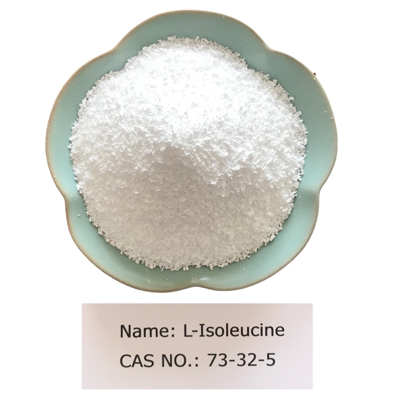 L-Isoleucine CAS NO 73-32-5 for Pharma Grade (USP/EP) Featured Image