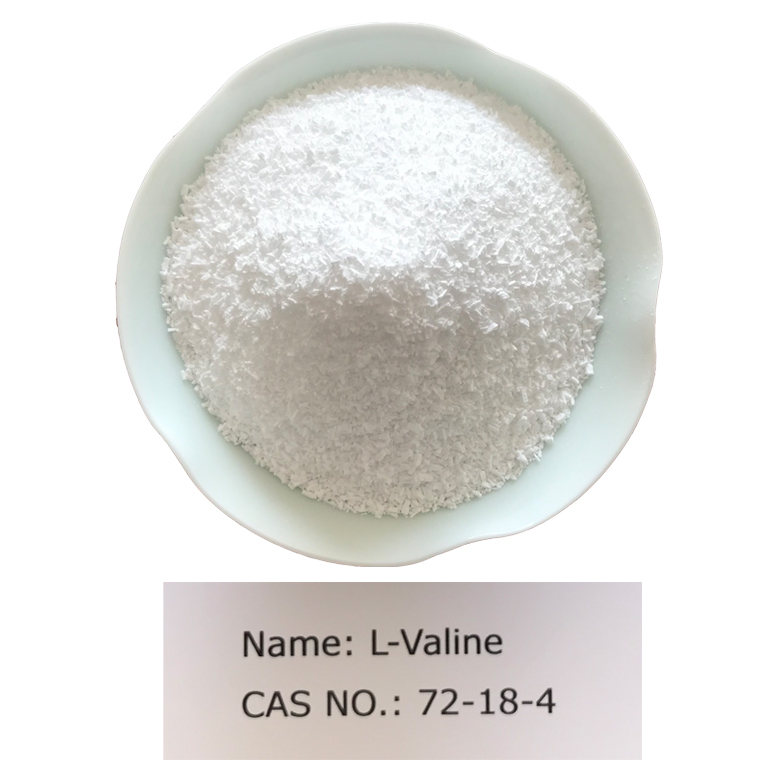 L-valine CAS NO 72-18-4 for Pharm Grade (USP) Featured Image
