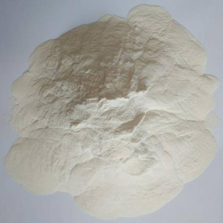 Xanthan Gum CAS NO 11138-66-2 For Feed Grade Featured Image