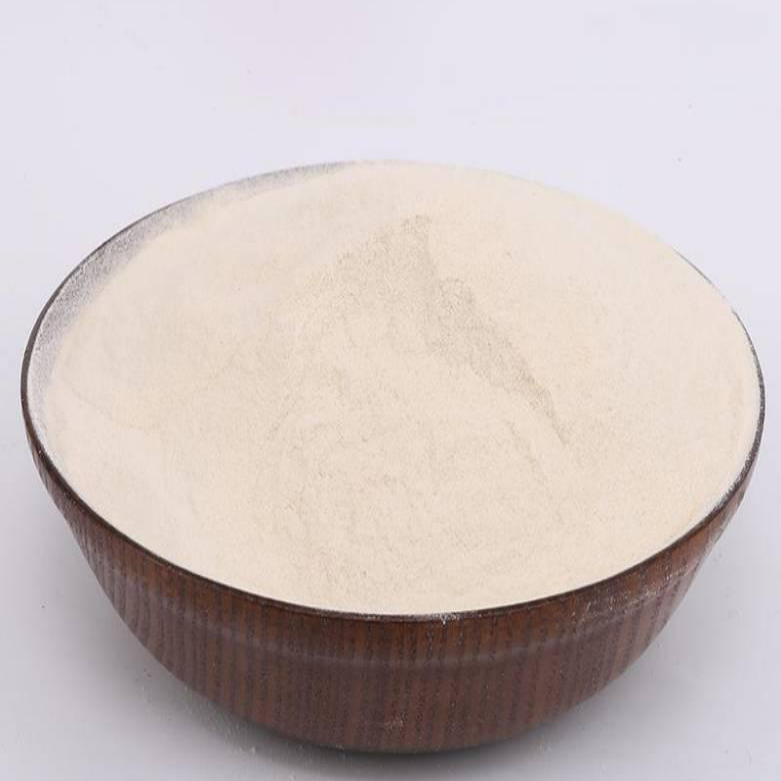 Xanthan Gum CAS NO 11138-66-2 For Food Grade Featured Image